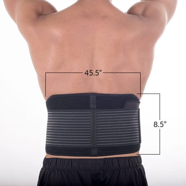 CareMed Pro Belt Dimensions